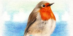 Kuş Bakışı Bakmak İster Misiniz?