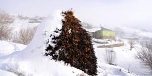 25 Ocak / Kış Şiddeti Fırtınası