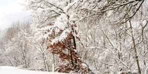2 Ocak / Fırtına (3 gün)