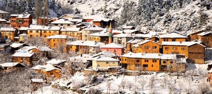 Gelemiç Köyü