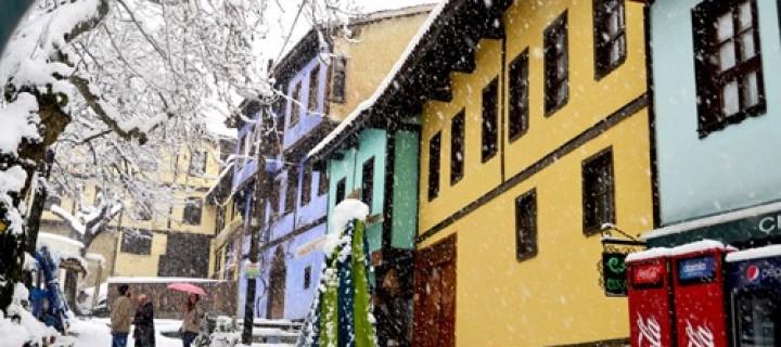 Bursa -20