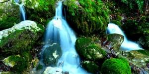 Doğa Yenicedir -4