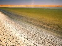 Dünya Sulak Alanlar Günü'nde Suyla İlgili Sorunlar Öne Çıkıyor