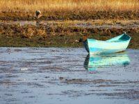 Artan Su Talebi Ekonomik ve Sosyal Sorunlara Davetiye Çıkarıyor