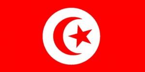 UNESCO Tunus İle Dayanışma İçerisinde