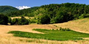 Gürle Dağı -1