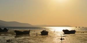 Bafa Gölü'nde Bir Yaz Akşamı -5