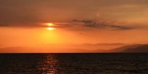 28 Ekim / Balık Fırtınası (Balıkların Marmara Denizi'nden Karadeniz'e Geçtiği Dönem)