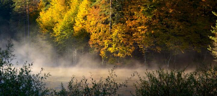 Göl, Güz, Renk, Bulut; Bozcaarmut