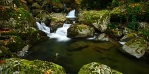 Doğa Yenicedir -147