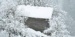 24 Ocak / Fırtına