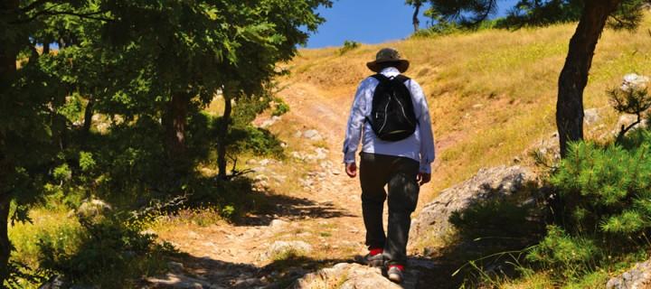 Kocayayla-Gelemiç: 13 km