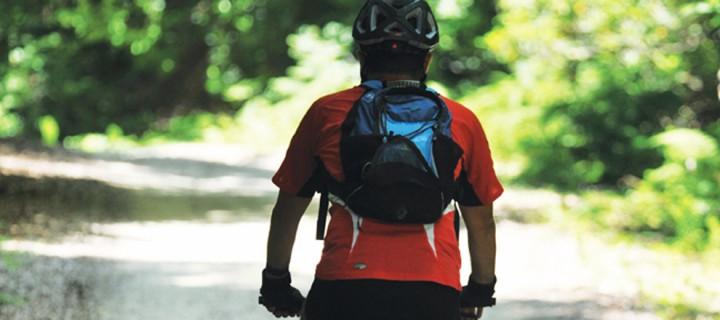 Sakarya Vadisi Yolu: 41 km