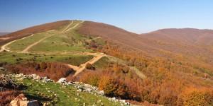 Haydariye Köyü Sapağı-Şahinyurdu Geçişi: 11 km