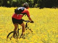 Niceae'dan Nikomedia'ya Trans Samanlı Bisiklet Parkuru: 122 km