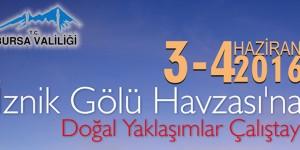 İznik Gölü Havzası'na Doğal Yaklaşımlar Çalıştayı