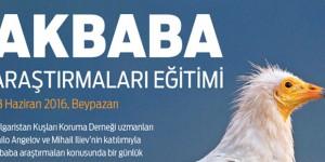 Akbaba Araştırmaları Eğitimi