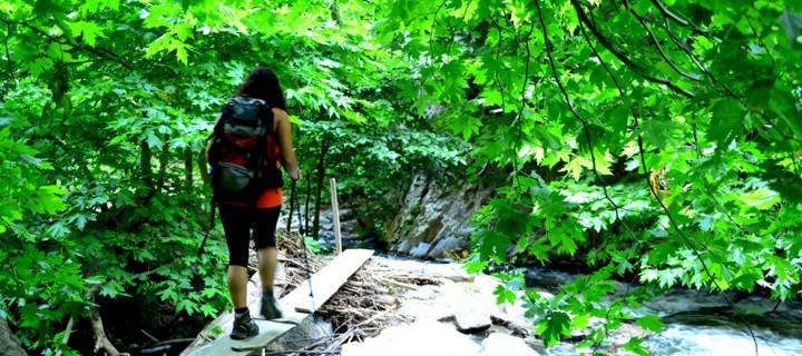 Bursa'nın Kanyonları ve Sadağı Kanyonu Rotası