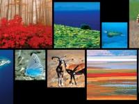 'Önemli Doğa Alanları' Yaklaşımı Uluslararası Standart Kabul Edildi
