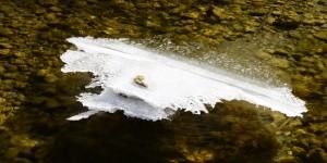 27 Şubat / İkinci Cemrenin Suya Düşmesi