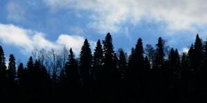 18 Mart / Kocakarı Soğuklarının Sonu