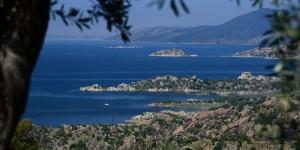 Bafa Gölü'nde Bahar