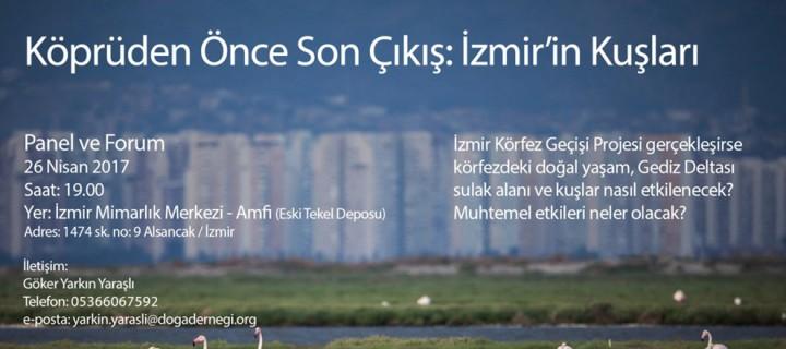 Köprüden Önce Son Çıkış: İzmir'in Kuşları