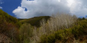 Samanlı Dağları'nda Bahar