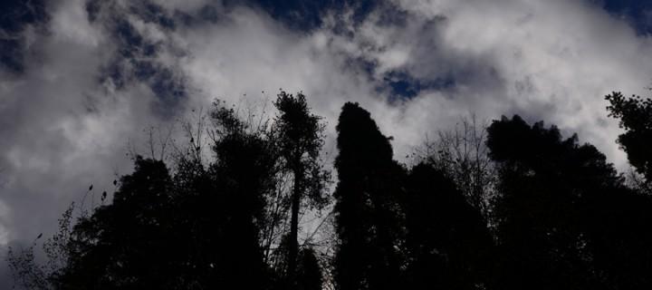 14 Nisan / Yağmurlar