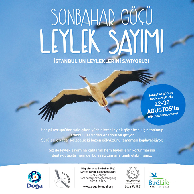 leylek sayimi