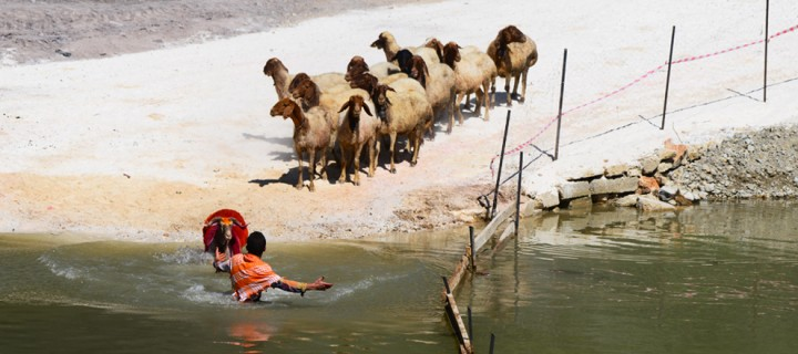 Çal Çoban Bayramı