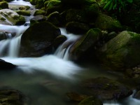 Muflizdere Kanyonu