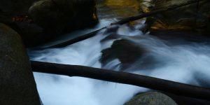3 Kasım / Balık Mevsimi