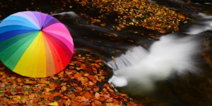 Yenice Fotoğraf Atölyesi Çalışması (27-29 Ekim)