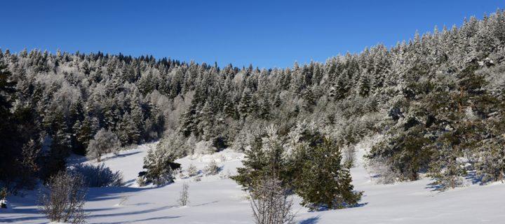 6 Aralık / Kuzey Rüzgârlarının Esmesi