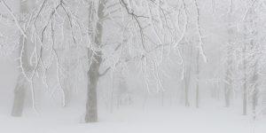 4 Ocak / Fırtına