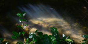 22 Mart / Kozkavuran Fırtınası