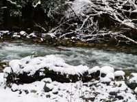 24 Şubat / Fırtına