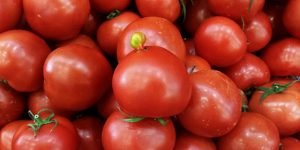 Gıda Kaynaklarının Kontrolü
