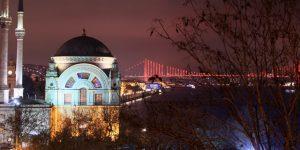 WWF-Türkiye'nin 'Dünya Saati' Etkinliği 24 Mart Cumartesi Gerçekleşecek