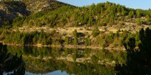 Yenipazar Barajı