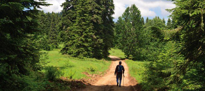 Yenice'de Trekking (14-17 Haziran 2018)