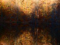 13 Ekim / Dünya Konut Günü. Dünya Habitat Günü