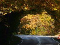 Safranbolu-Bartın Yolu