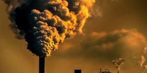 Sivil Toplumdan İklim İçin Ortak Çağrı