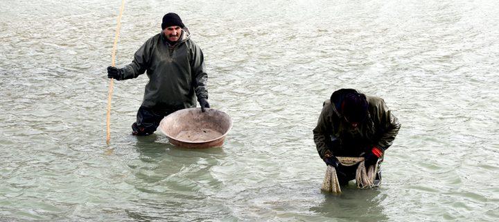 Murat'ta Balık Tutmak