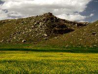 Şahinşah Köyü